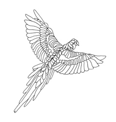 Zentangle stylized macaw parrot Sketch for tattoo vector image