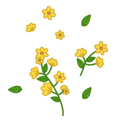 green branch with small yellow flowers and leaves vector image