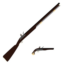 Musket rifle and gun vector