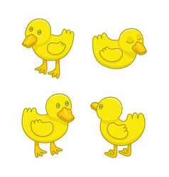 set ducklings vector image