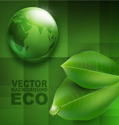 transparent green ball-globe and leaves vector image