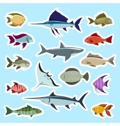 Colorful fish stickers set vector image vector image