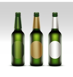 Set of Bottles Light Beer with labels Isolated vector image vector image