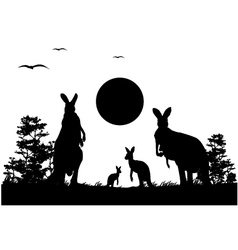 silhouette of the kangaroo family vector image