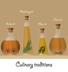 Bottles of anise olive rosemary and clove oil vector image