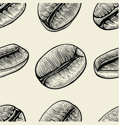 branch of coffee and beans vector image