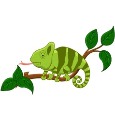 cute cartoon chameleon vector image