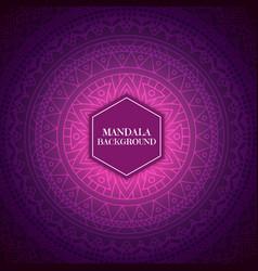 elegant background with mandala design vector image