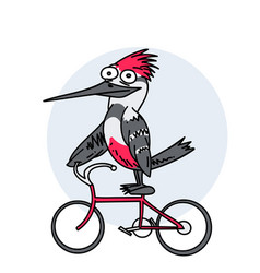 funny bird on a bike vector image