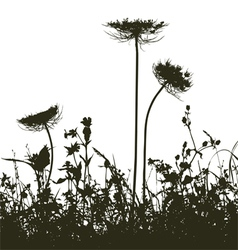 Meadow weeds silhouettes Plants vector image
