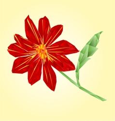 Red dahlia polygons summer flower stem vector image