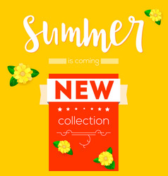summer new collection advertising banner text vector image