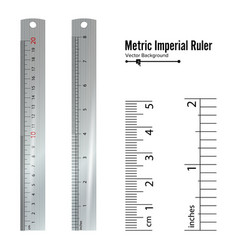 metric imperial rulers centimeter and inch vector image vector image