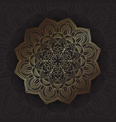 elegant design background vector image vector image
