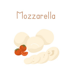 gourmet italian mozzarella cheese with cherry vector image