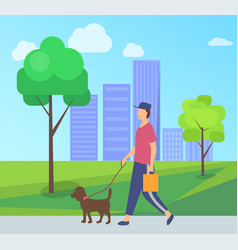 person going with dog character with pet vector image
