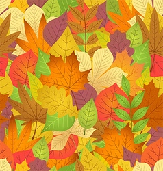 Seamless with autumn leaves on white background vector