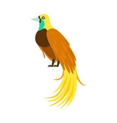 tropical bird with long feathers colorful vector image