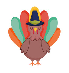 turkey cartoon bird with pilgrim hat isolated icon vector image