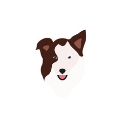border collie brown head vector image
