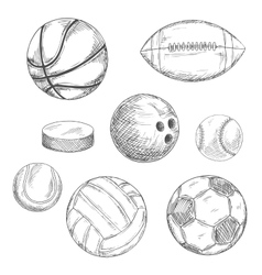 Sport balls and ice hockey puck sketches vector image vector image