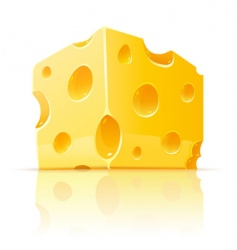 cheese with holes vector image