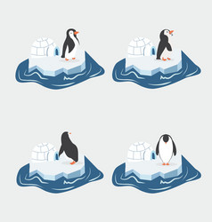 cute penguins on a piece of iceberg set vector image