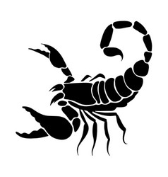 Graphic scorpion vector