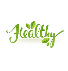 Healthy and organic green glossy leaves and vector