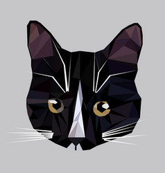 low poly cat icon vector image