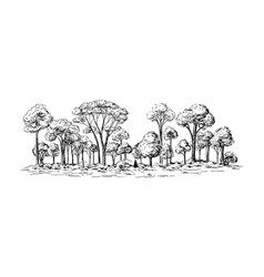 Panoramic view of the forest from deciduous trees vector
