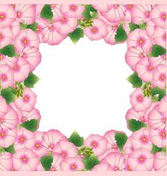 pink alcea rosea border - hollyhocks vector image