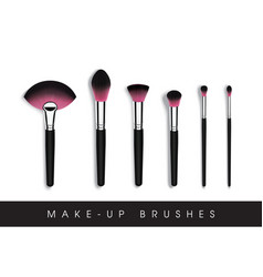 set of makeup cosmetic brushes vector image