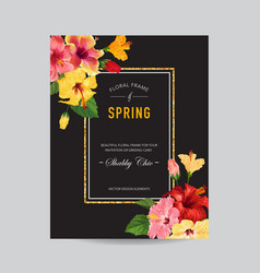 spring and summer greeting card with frame floral vector image