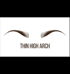 Thin high arch hand drawn brows shape vector