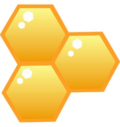 Honey Bee Hives vector image