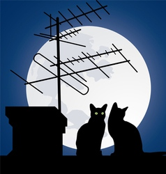 cats on the roofs vector image vector image