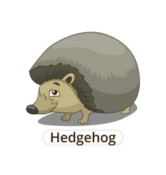 Forest animal hedgehog cartoon vector