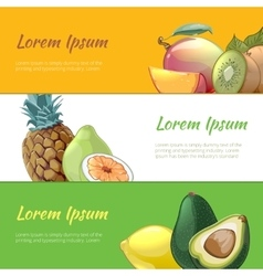 Juicy fruits banners set vector image