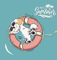 summer dog vector image