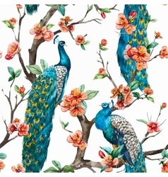 Watercolor peacock pattern vector image