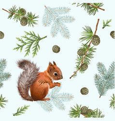 winter squirrel pattern vector image