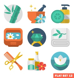 Beauty and Spa Flat icons vector