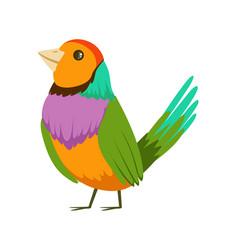 Colorful tropical bird vector