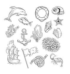 marine themed hand drawn set vector image