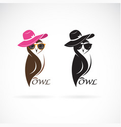 owl fashion design on white background birds vector image