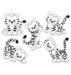 set cute tigers vector image