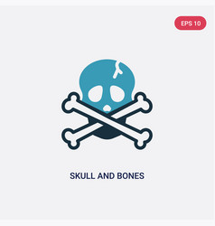 two color skull and bones icon from nautical vector image