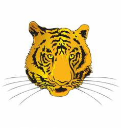 tiger chinese zodiac vector image vector image