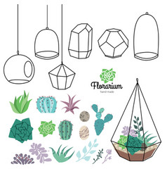 glass terrariums with beautiful succulents vector image vector image
